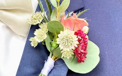From Seed to Ceremony